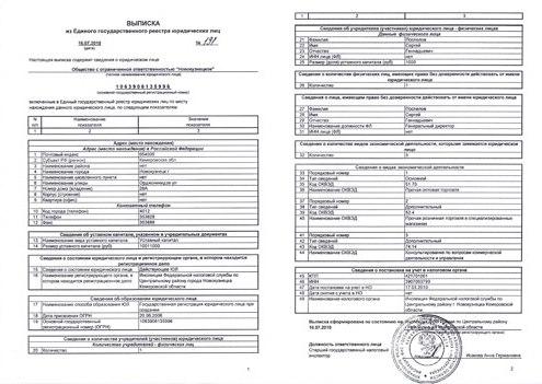 Выписка из ЕГРЮЛ по ИНН - бесплатно из налоговой ФНС